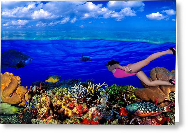Snorkel Greeting Cards - Diver Along Reef With Parrotfish, Green Greeting Card by Panoramic Images