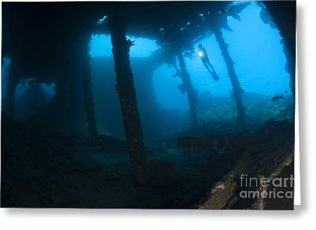 Undersea Photography Greeting Cards - Diver Exploring The Liberty Wreck Greeting Card by Steve Jones