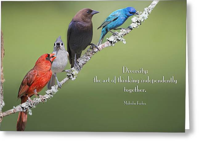 Cowbird Greeting Cards - Diversity Greeting Card by Bonnie Barry