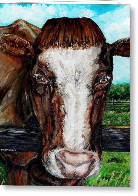 Maine Farms Greeting Cards - Divine Bovine Greeting Card by Shana Rowe