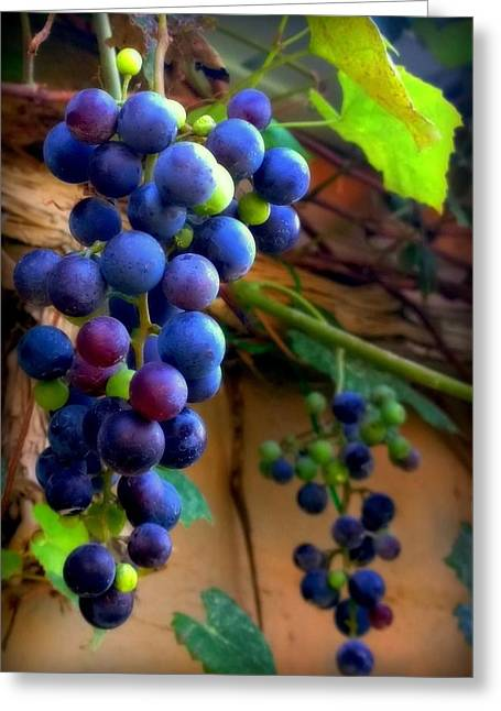 Purple Grapes Photographs Greeting Cards - Divine Perfection Greeting Card by Karen Wiles
