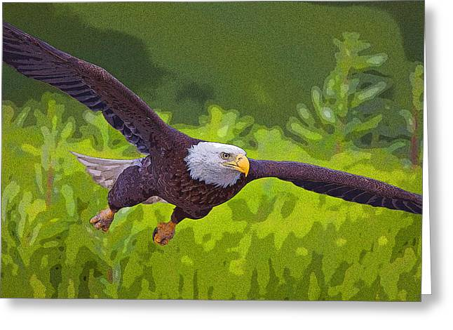 Eagle Greeting Cards - Diving for Dinner- Abstract Greeting Card by Tim Grams