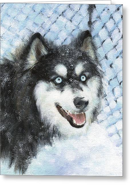 Dogs In Snow. Greeting Cards - Diving in the Snow Greeting Card by Natasha Denger