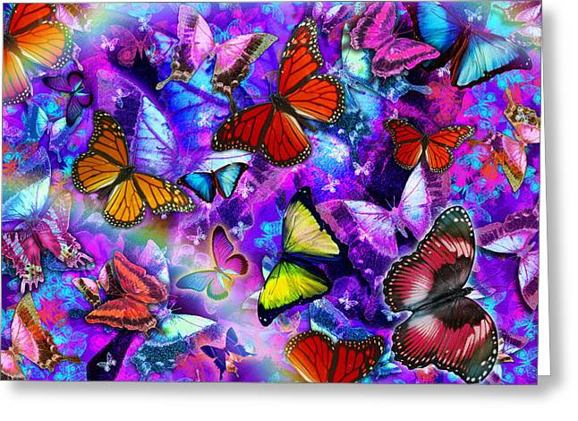 Coloured Greeting Cards - Dizzy Colored Butterfly Explosion Greeting Card by Alixandra Mullins
