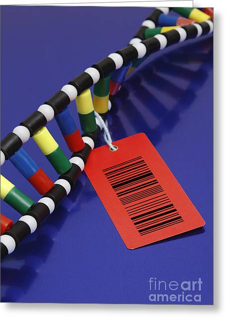 Dna Double Helix With Barcode Greeting Card by GIPhotoStock