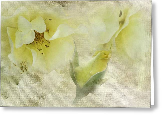 Golden Shower Greeting Cards - Do Yellow Roses Say Goodby Greeting Card by Diane Schuster