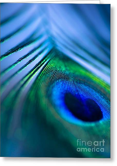 Iridescent Greeting Cards - Do You Dream In Colour? Greeting Card by Jan Bickerton