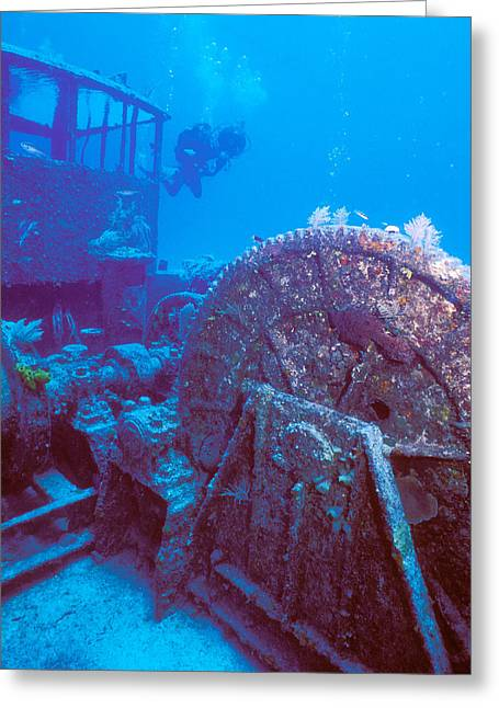Undersea Photography Greeting Cards - Doc Polson Wreck In The Sea, Grand Greeting Card by Panoramic Images