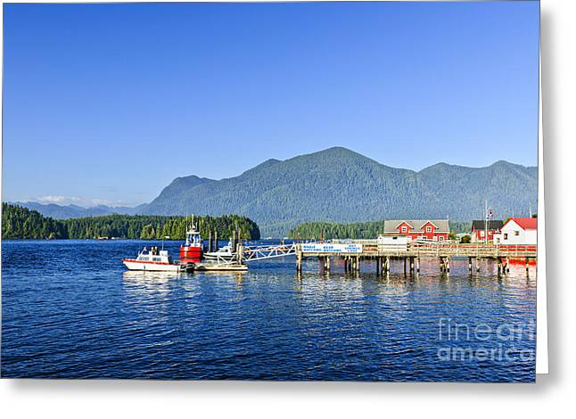 Bc Coast Greeting Cards - Dock In Tofino Greeting Card by Elena Elisseeva