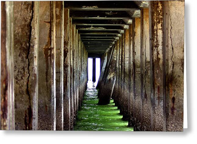 Dock Of The Bay Greeting Card by Bill Gallagher