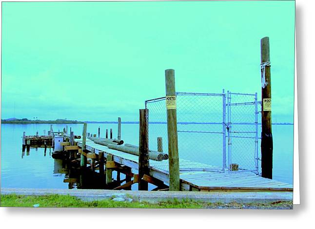 Ocean Vista Greeting Cards - Dock on McKay Bay Greeting Card by Buzz Coe