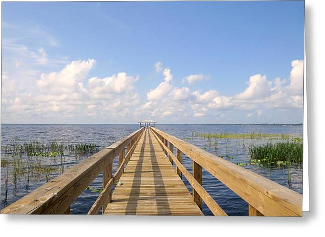 Lake Walden Greeting Cards - Dock on the lake Greeting Card by Zina Stromberg