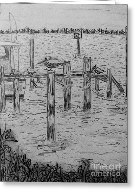 Dock Sketch Greeting Card by Megan Dirsa-DuBois