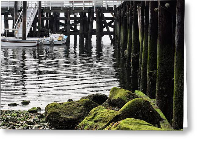 Stepping Stones Greeting Cards - Dockside 2 Greeting Card by JC Findley