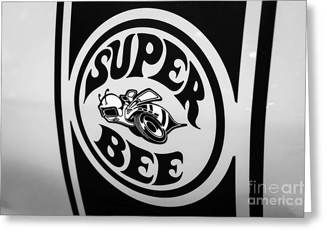 Super Bee Greeting Cards - Dodge Super Bee Decal Black and White Picture Greeting Card by Paul Velgos