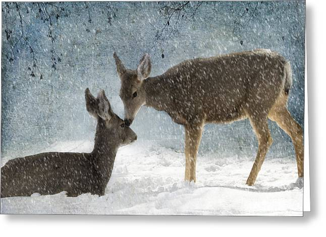 Does. Winter Greeting Cards - Doe a Deer Greeting Card by Juli Scalzi