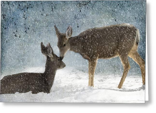 Manipulated Greeting Cards - Doe a Deer Greeting Card by Juli Scalzi