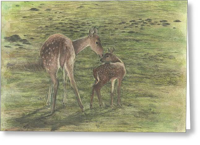 Caring Mother Mixed Media Greeting Cards - Doe and Fawn Greeting Card by Carolee Conway