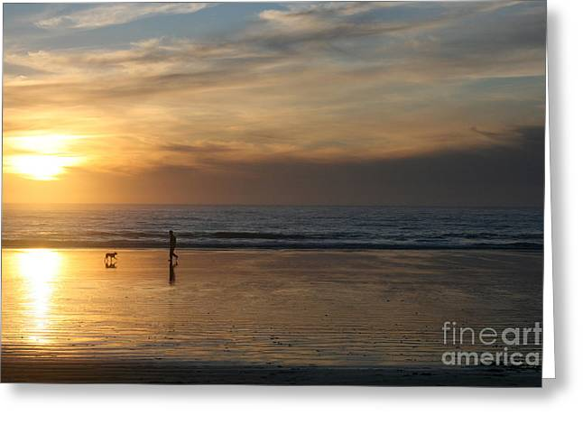 Dog Play Sea Greeting Cards - Dog and Man on The Beach Greeting Card by Ian Donley