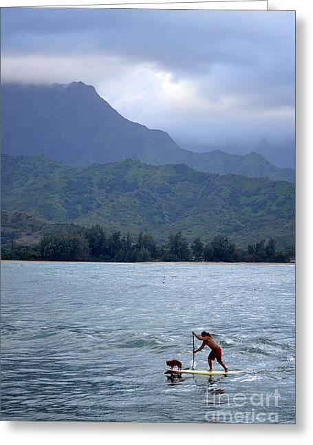 Kauai Dog Greeting Cards - Dog and Man Paddleboarding in Hanalei Bay Greeting Card by Catherine Sherman