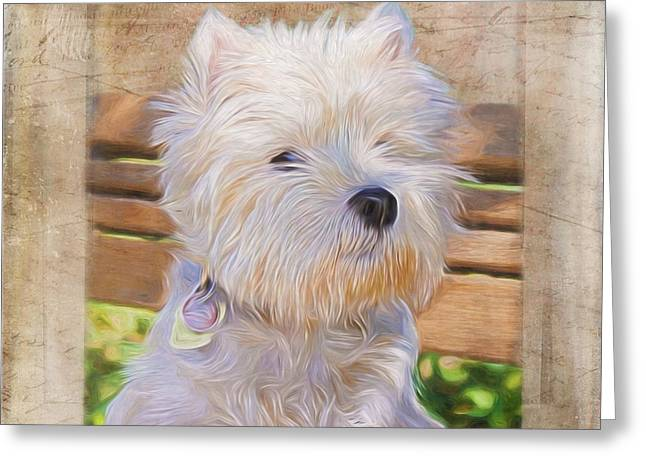 Puppy Digital Greeting Cards - Dog Art - Just One Look Greeting Card by Jordan Blackstone