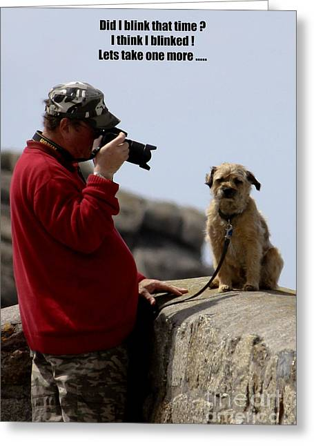 Terri Waters Greeting Cards - Dog Being Photographed Greeting Card by Terri  Waters