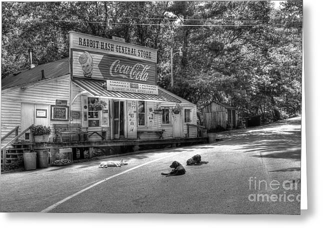 Dog Day Afternoon bw Greeting Card by Mel Steinhauer