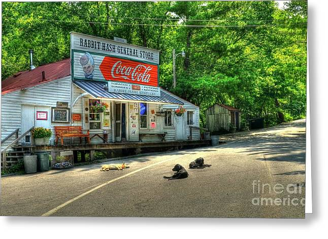 Roadway Photographs Greeting Cards - Dog Day Afternoon Greeting Card by Mel Steinhauer