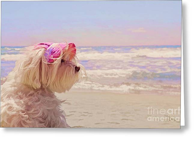 Maltese Mixed Media Greeting Cards - Dog Days of Summer Greeting Card by Andrea Auletta