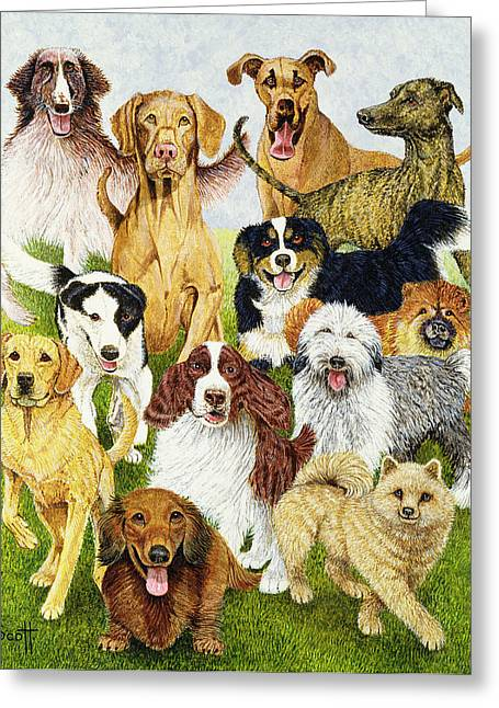 Spaniel Greeting Cards - Dog Days Oil On Canvas Greeting Card by Pat Scott