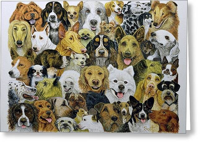 Breeds Greeting Cards - Dog Friends Oil On Canvas Greeting Card by Pat Scott
