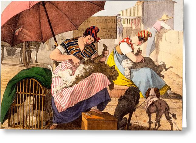 Dog Drawings Greeting Cards - Dog Groomers, 1820 Greeting Card by French School