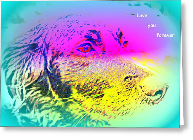 Free Will Greeting Cards - If You Want True Love Greeting Card by Hilde Widerberg