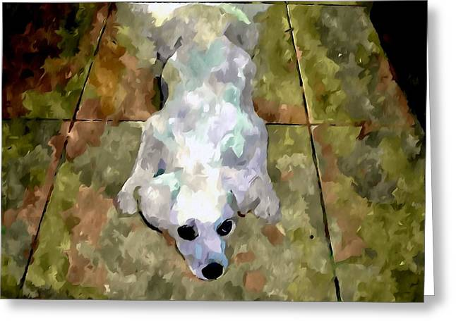 Dog Close-up Paintings Greeting Cards - Dog lying on floor  Greeting Card by Lanjee Chee