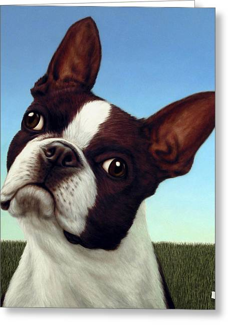 Boston Terrier Greeting Cards - Dog-Nature 4 Greeting Card by James W Johnson