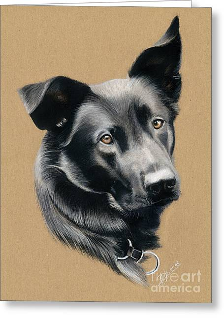 Shepherds Pastels Greeting Cards - Dog pastel portrait Greeting Card by Jeanne Delage