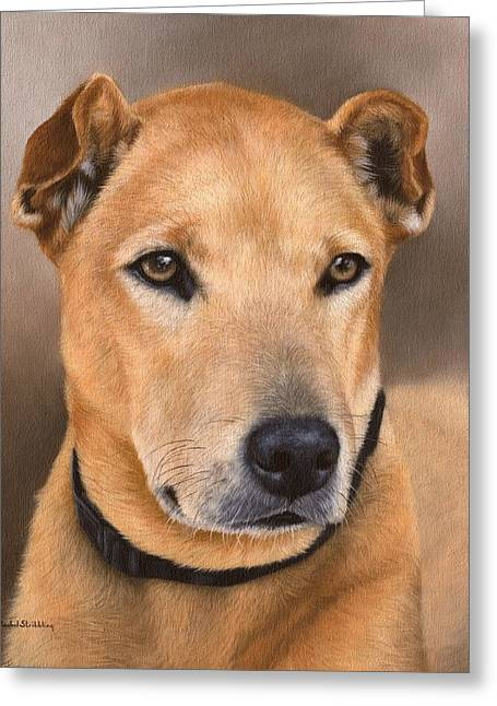 Domestic Pets Greeting Cards - Dog Portrait Painting - In Support of the BLES Cat and Dog Home Greeting Card by Rachel Stribbling