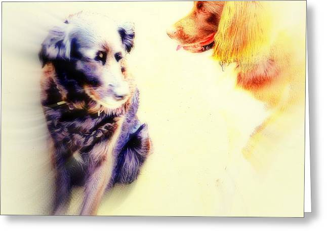 Sun Breakthrough Greeting Cards - Dog Romance Greeting Card by Hilde Widerberg