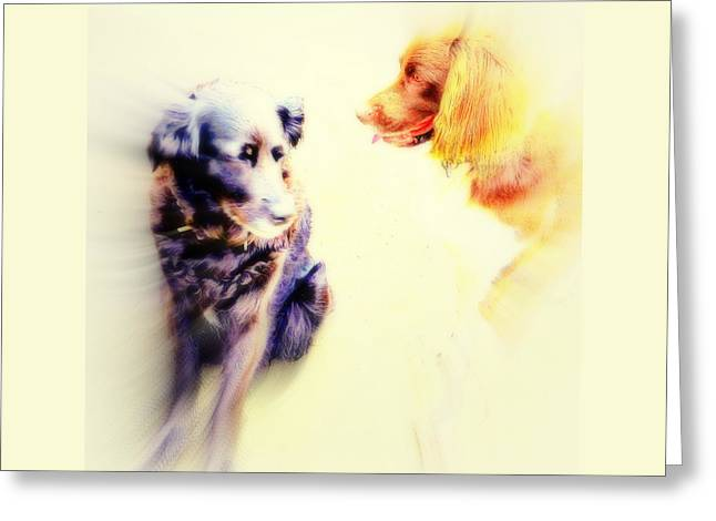 If You Are Dreaming Of A Dog Romance Dream Again  Greeting Card by Hilde Widerberg