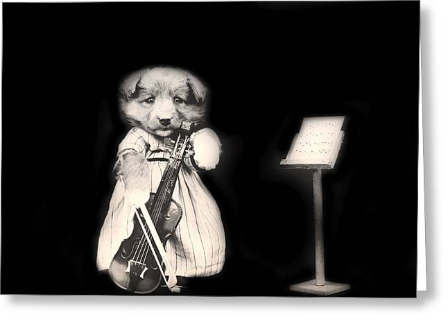 Music Stand Greeting Cards - Dog Serenade Greeting Card by Mountain Dreams