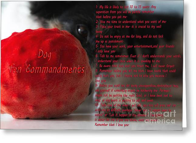 Playful Greeting Cards - Dog Ten Commandments Greeting Card by Stylianos Kleanthous