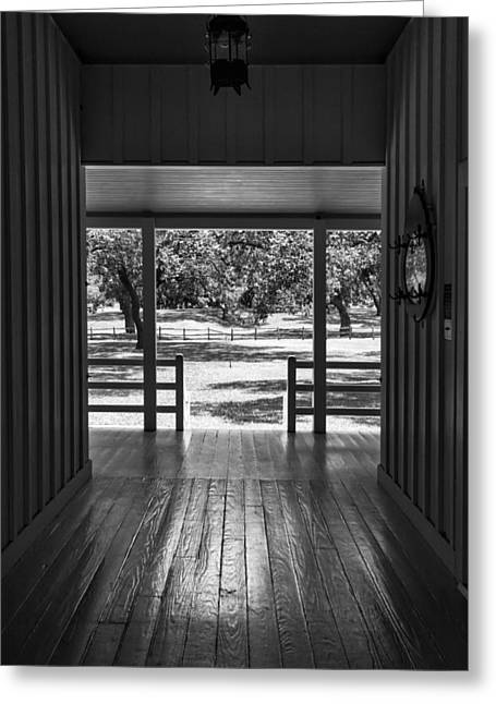 Dog Trots Photographs Greeting Cards - Dog Trot at LBJ Birthplace BW Greeting Card by Joan Carroll
