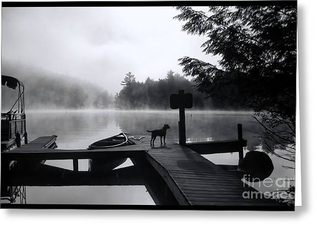 Boats At Dock Greeting Cards - Dog - Waiting For Her - Luther Fine Art Greeting Card by Luther  Fine Art