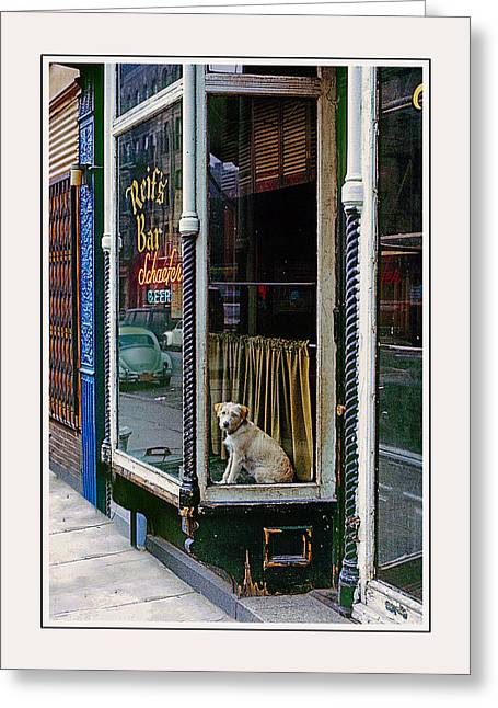 Dog In Window Greeting Cards - Doggy In The Window Version - 1 Greeting Card by Larry Mulvehill