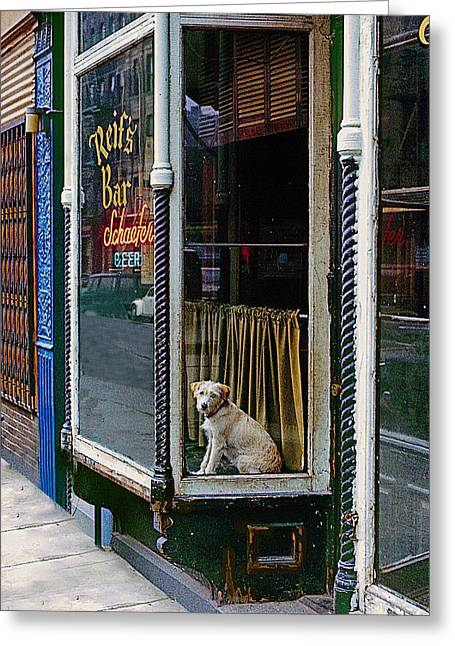 Dog In Window Greeting Cards - Doggy In The Window Version - 4 Greeting Card by Larry Mulvehill