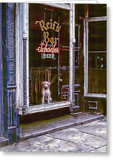 Dog In Window Greeting Cards - Doggy In The Window Version - 7 Greeting Card by Larry Mulvehill