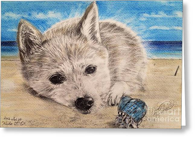 On The Beach Pastels Greeting Cards - Dogs and hermit crab on the beach Greeting Card by Keiko Olds