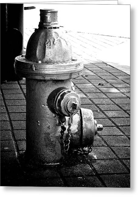 Hydrant Greeting Cards - Dogs Best Friend Greeting Card by Brandon Addis