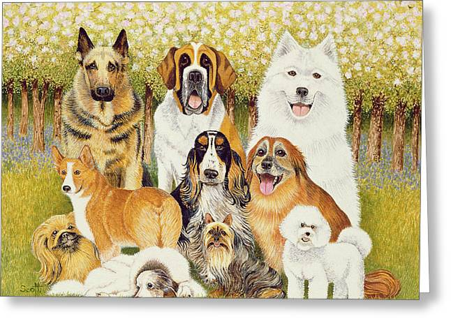 Dogs In May Greeting Card by Pat Scott