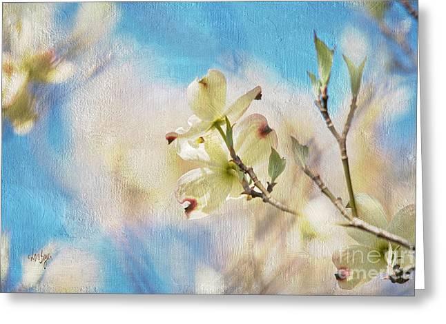 Dogwood Blossom Greeting Cards - Dogwood Against Blue Sky Greeting Card by Lois Bryan